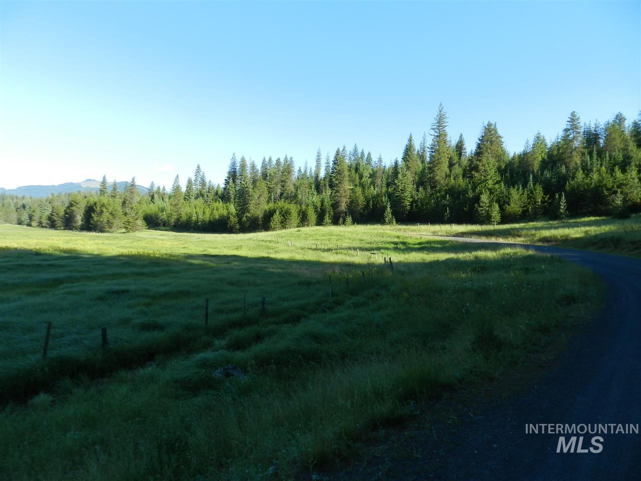 Agricultural Land for Sale at NNA fsr 377/Palouse Divide Road NNA fsr 377/Palouse Divide Road Bovill, Idaho 83806
