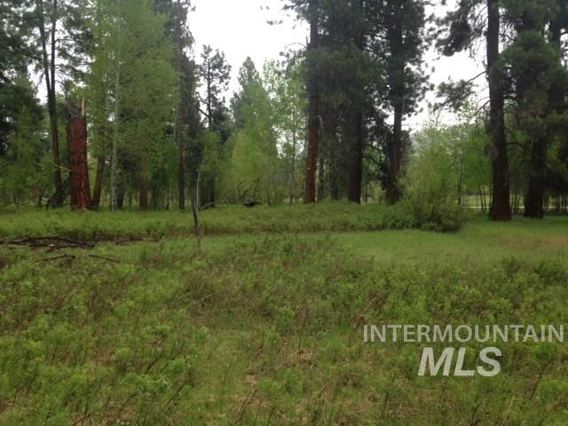 Land for Sale at Lot 6 Elk Valley Way Featherville, Idaho 83647