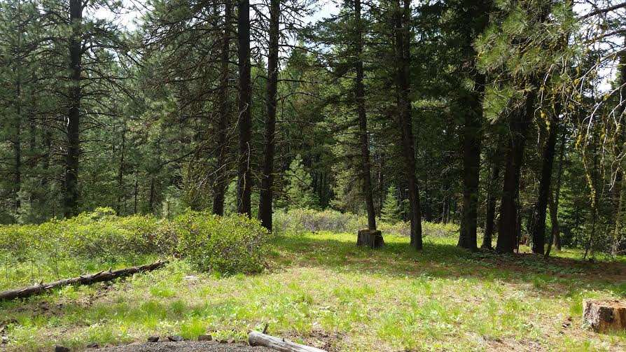 Land for Sale at 38 Landale Lane 38 Landale Lane Cascade, Idaho 83611