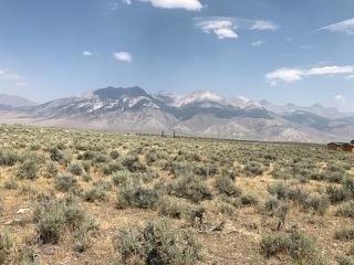 Land for Sale at 5876 W Remington Ridge 5876 W Remington Ridge Mackay, Idaho 83251