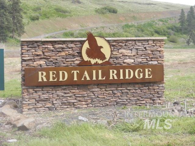 Lot 2 Red Tail Ridge, Colfax, WA 99111