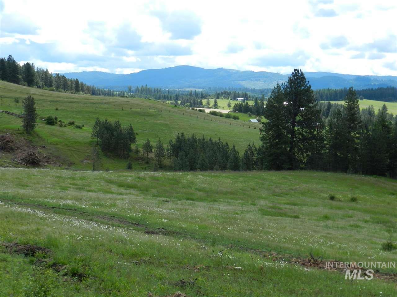 NNA Montana St, Deary, ID 83823