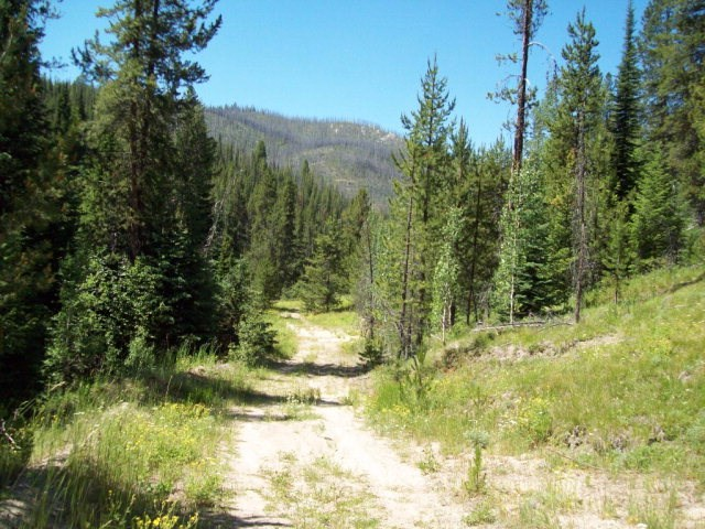 Recreational Property for Sale at tbd Main Street tbd Main Street Warren, Idaho 83671