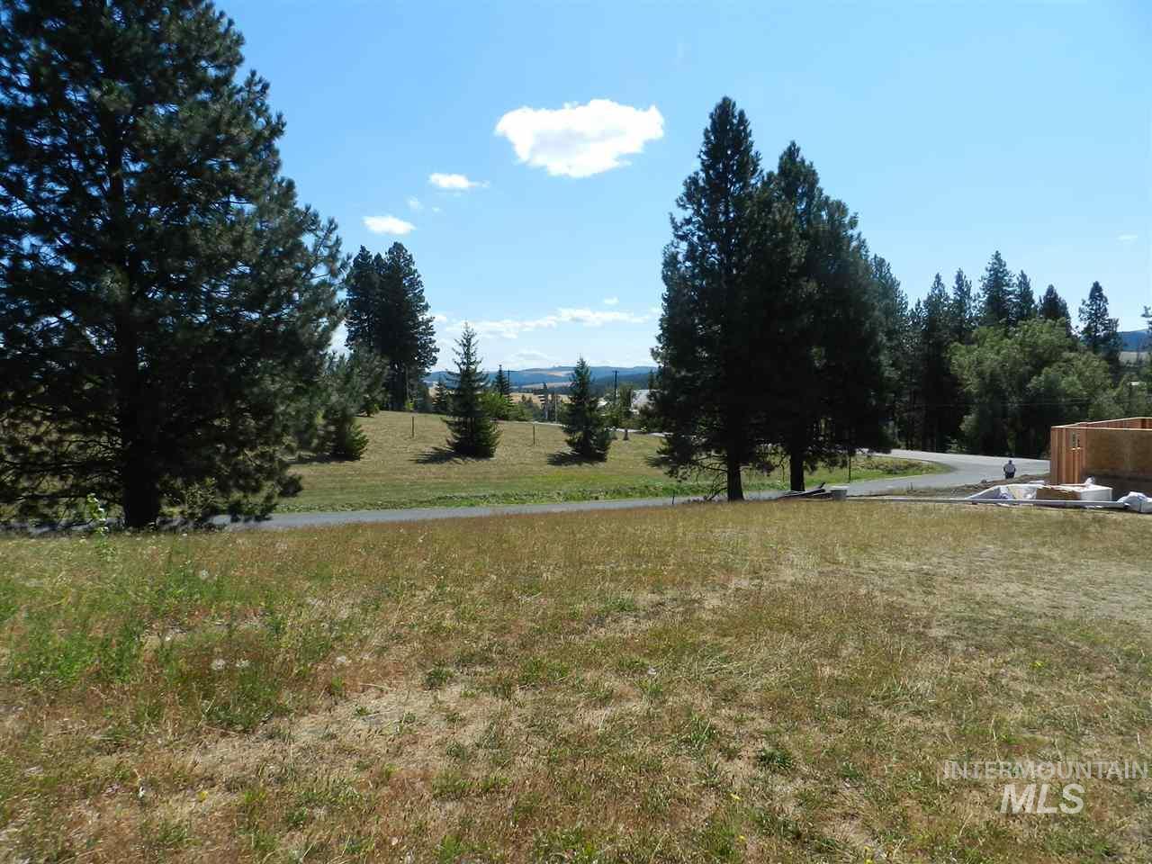 Land for Sale at NNA Ponderosa Drive NNA Ponderosa Drive Potlatch, Idaho 83855