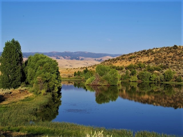 Agricultural Land for Sale at TBD C. Ben Ross Road TBD C. Ben Ross Road Indian Valley, Idaho 83632