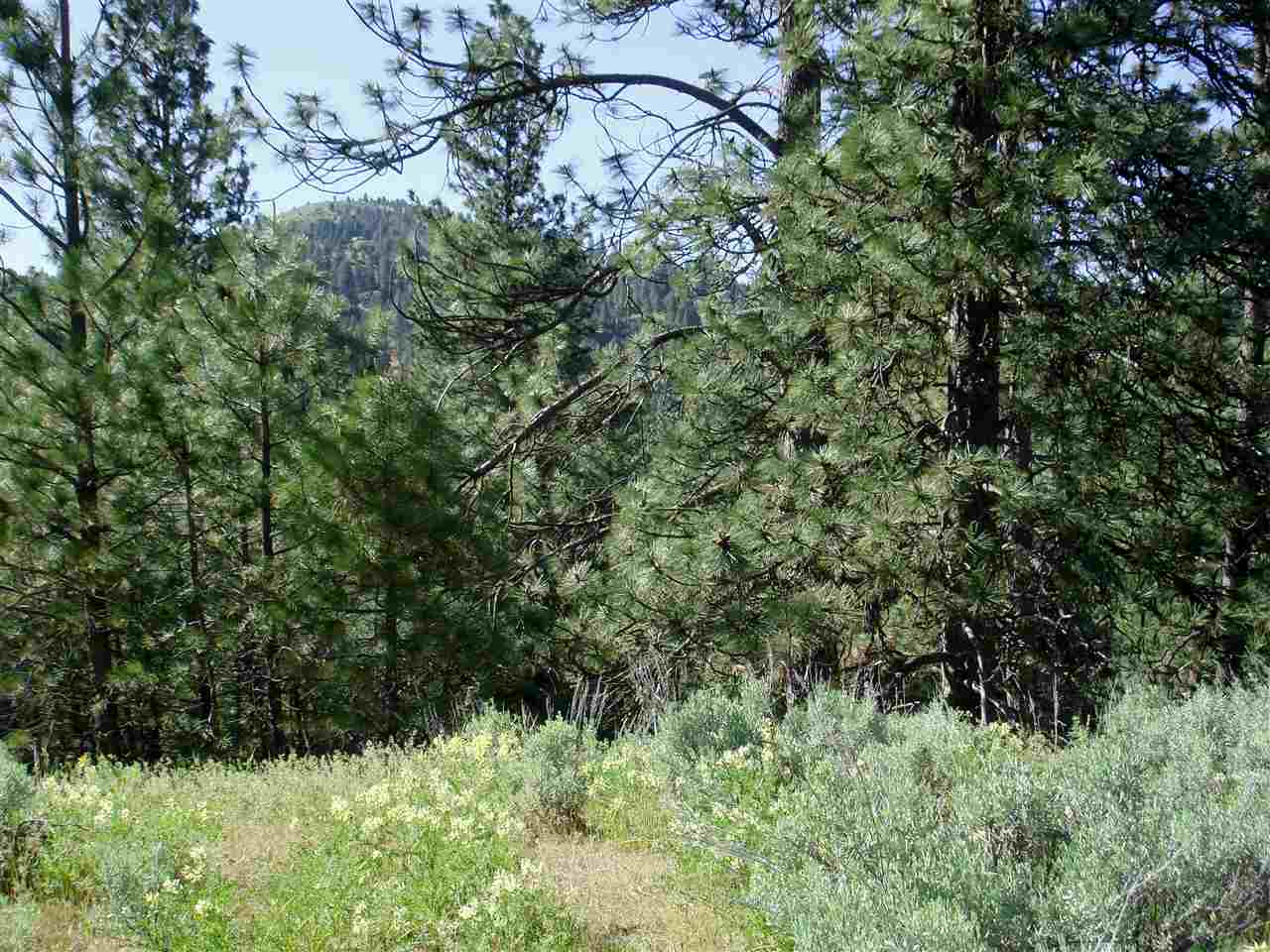 Recreational Property for Sale at Kelly Gulch Road Kelly Gulch Road Idaho City, Idaho 83631