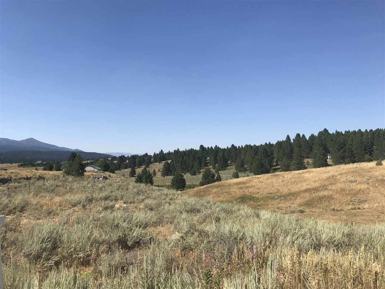 Land for Sale at 128 Skidoo Place 128 Skidoo Place Cascade, Idaho 83611