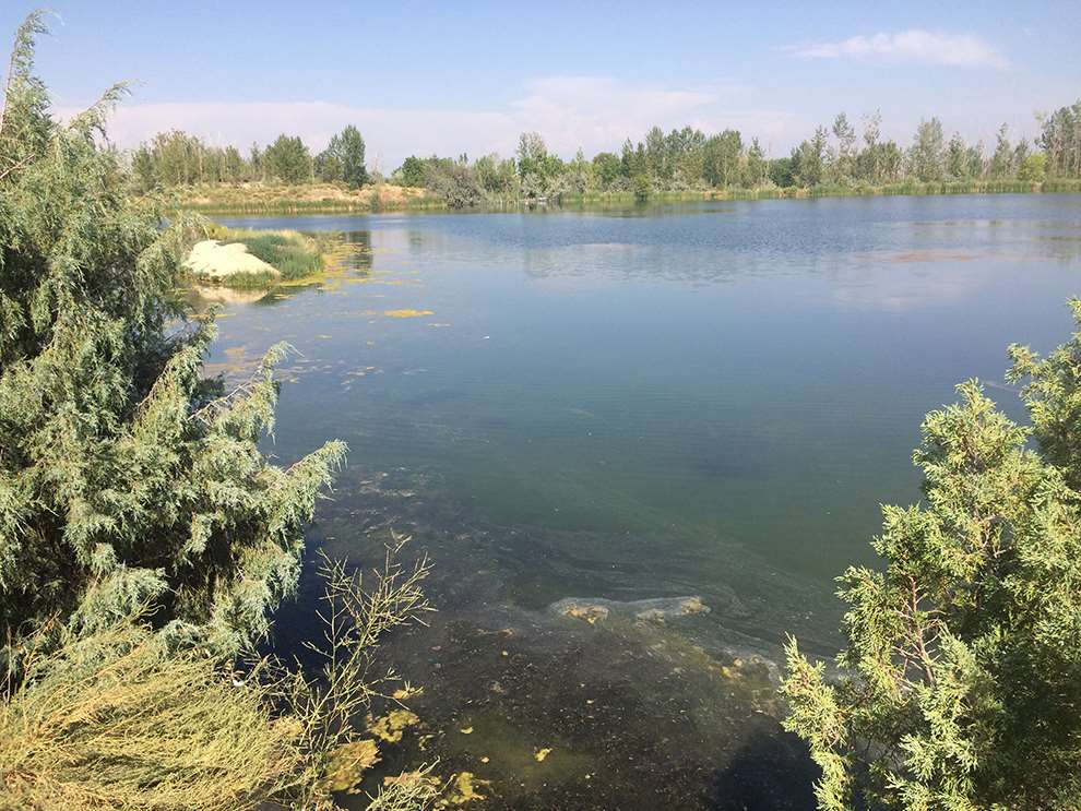 Recreational Property for Sale at TBD E Canyon Loop Road TBD E Canyon Loop Road Adrian, Oregon 97901