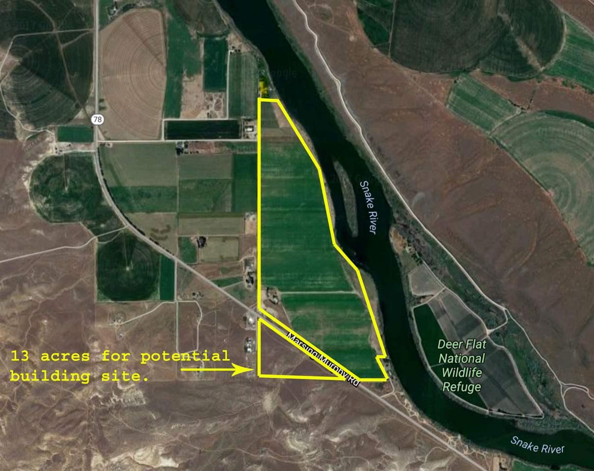 Farm for Sale at 16476 Hwy 78 16476 Hwy 78 Melba, Idaho 83641