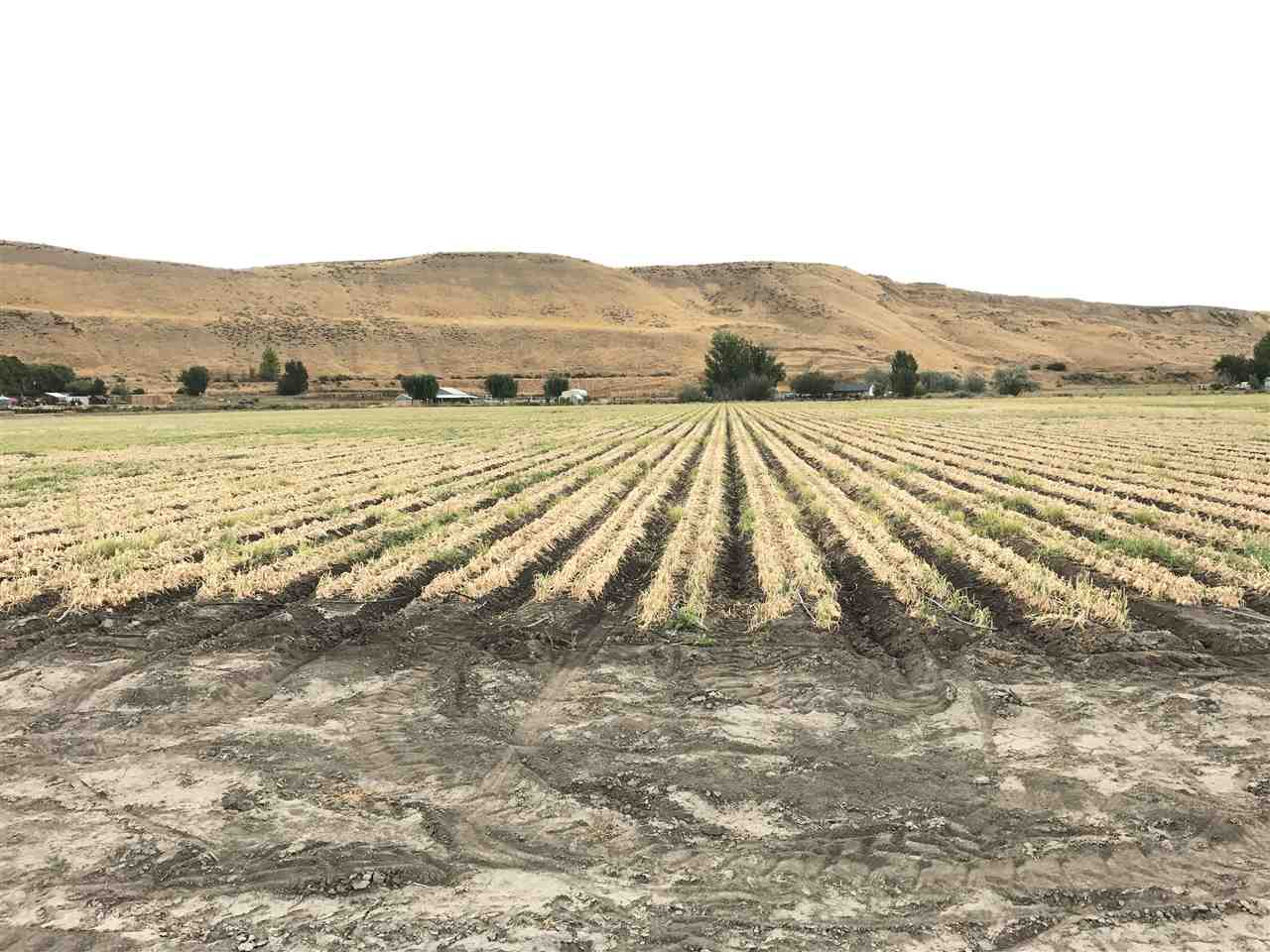 Agricultural Land for Sale at TBD Crystal Lane TBD Crystal Lane Weiser, Idaho 83672