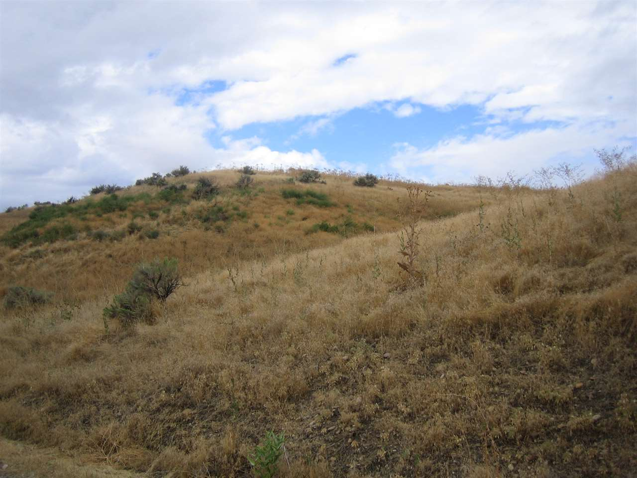 Additional photo for property listing at TBD Speas Road TBD Speas Road Fruitland, Idaho 83619