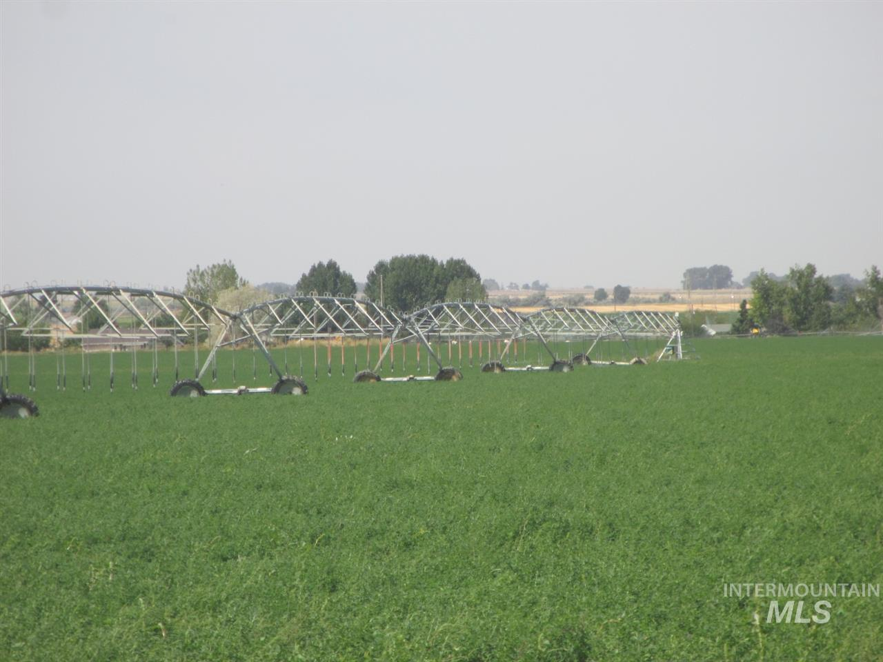 Farm for Sale at 3425 A N 3400 E 3425 A N 3400 E Kimberly, Idaho 83341