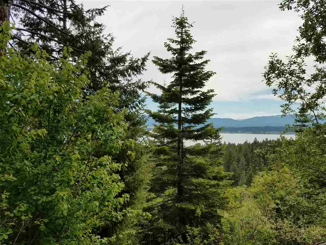 Recreational Property for Sale at TBD - M Anderson Creek TBD - M Anderson Creek Cascade, Idaho 83611