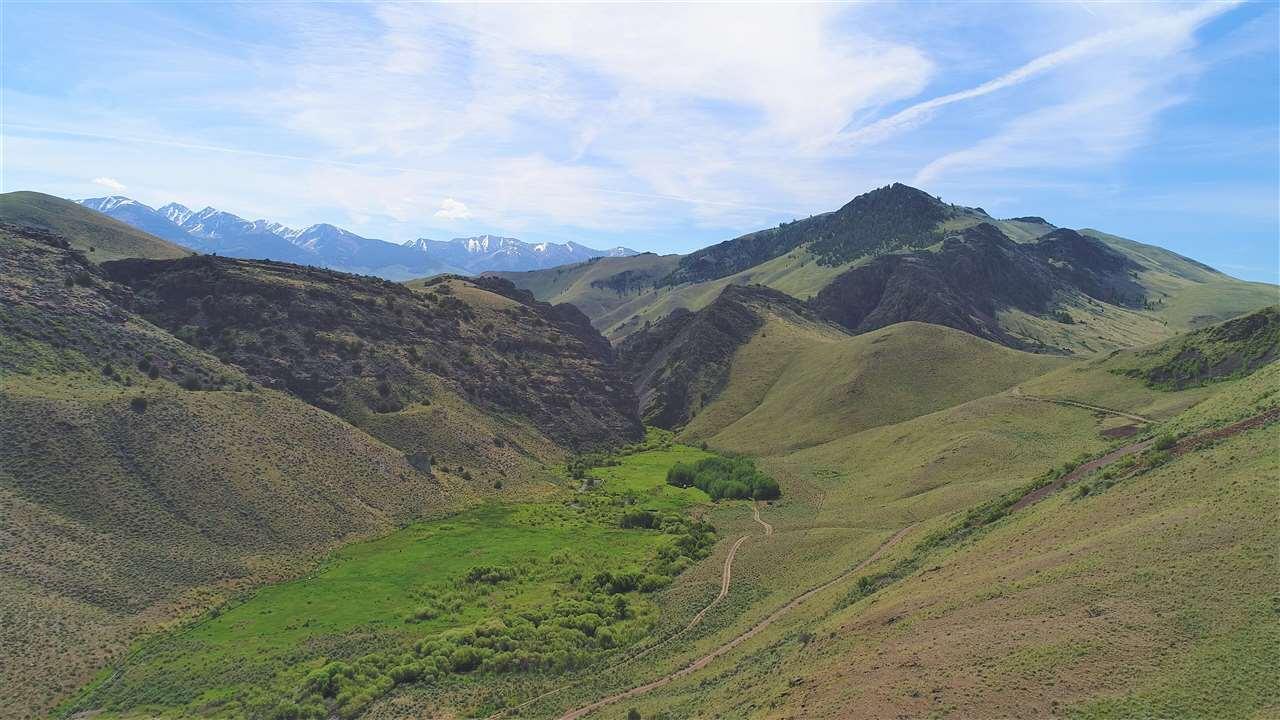 Hacienda por un Venta en 845 Hat Creek Road 845 Hat Creek Road Salmon, Idaho 83467