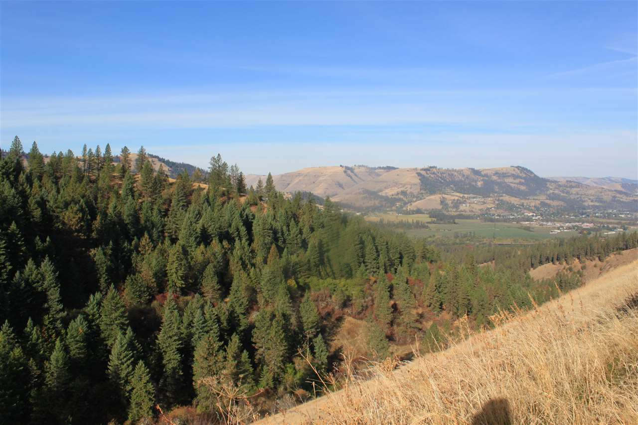 Recreational Property for Sale at TBD TBD TBD TBD Kooskia, Idaho 83539