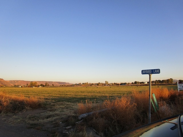 Additional photo for property listing at 8185 Jay Bird Lane 8185 Jay Bird Lane Marsing, 爱达荷州 83641