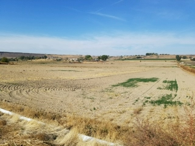 Agricultural Land por un Venta en S Powerline Road S Powerline Road Melba, Idaho 83641