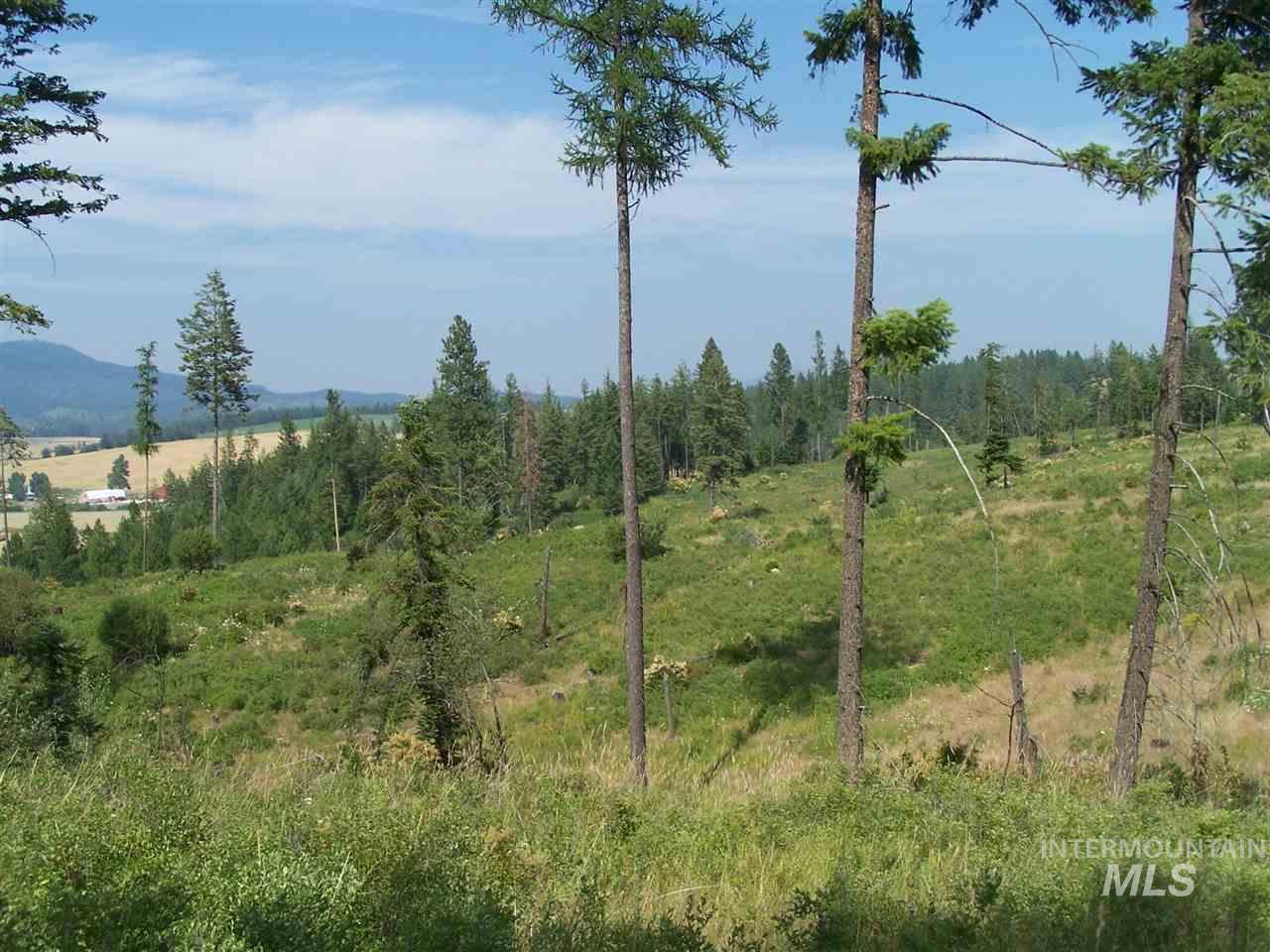Land for Sale at NNA Guernsey Cut-off NNA Guernsey Cut-off Princeton, Idaho 83857