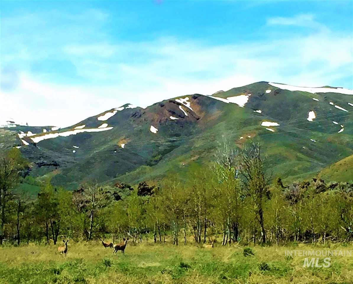 Ranch for Sale at 1650 Blizzard Mtn. Road 1650 Blizzard Mtn. Road Arco, Idaho 83213