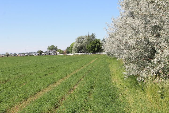 Ranch for Sale at 3500 E 3000 N 3500 E 3000 N Kimberly, Idaho 83341