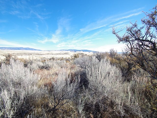 Land for Sale at TBD S Grays Creek Road TBD S Grays Creek Road Indian Valley, Idaho 83672