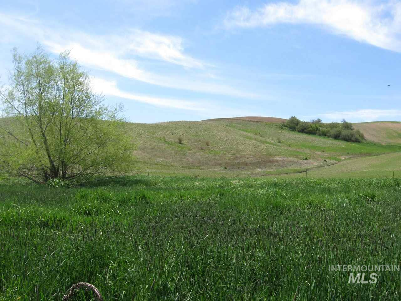 Agricultural Land for Sale at TBD Becker Road TBD Becker Road Colton, Washington 99113