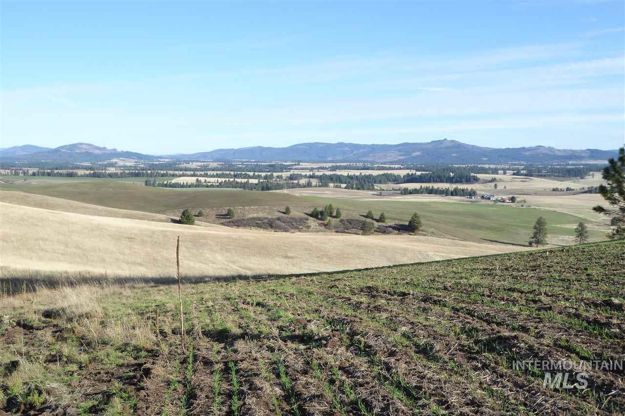 Agricultural Land for Sale at 2171 Hwy 3 2171 Hwy 3 Kendrick, Idaho 83537