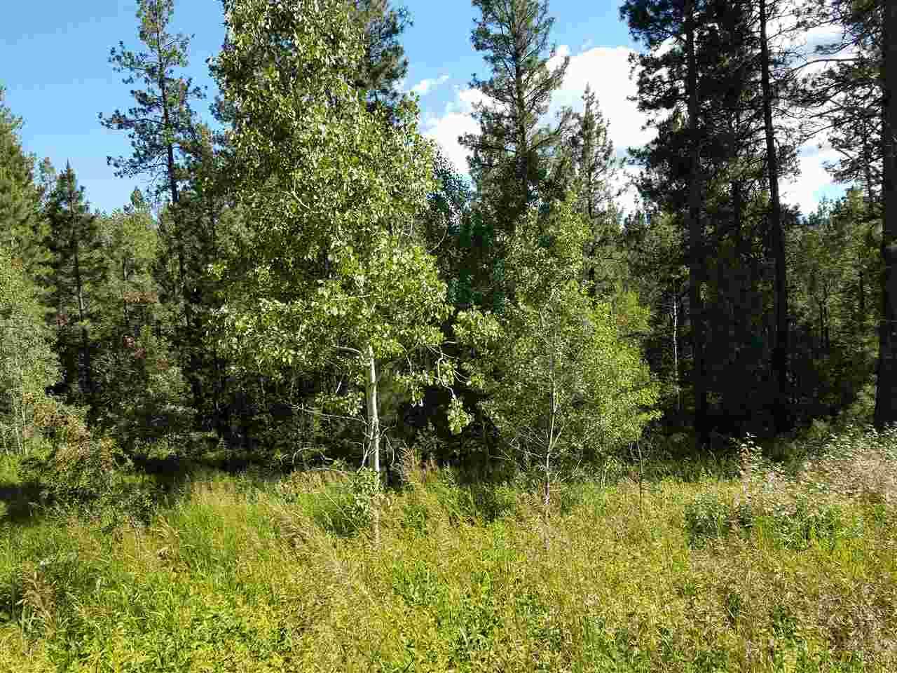 Land for Sale at 37 Shady Pine Wy 37 Shady Pine Wy Cascade, Idaho 83631
