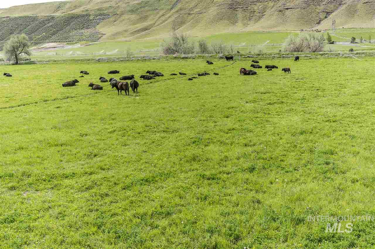 Farm for Sale at 14400 E ShoeString Road 14400 E ShoeString Road Bliss, Idaho 83314