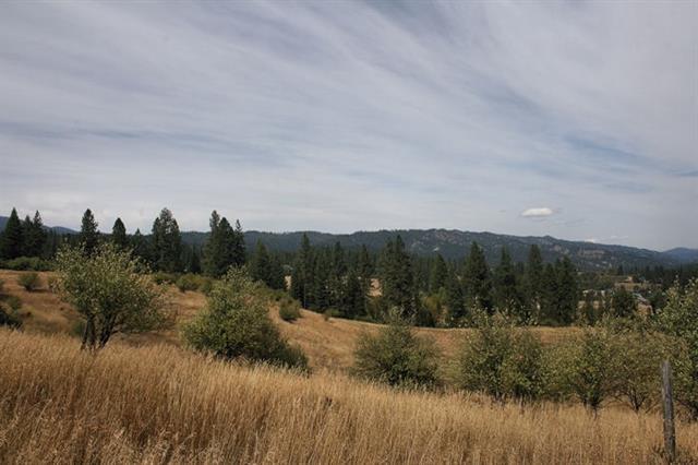 Oportunidad de negocio por un Venta en Open Road Open Road Garden Valley, Idaho 83622