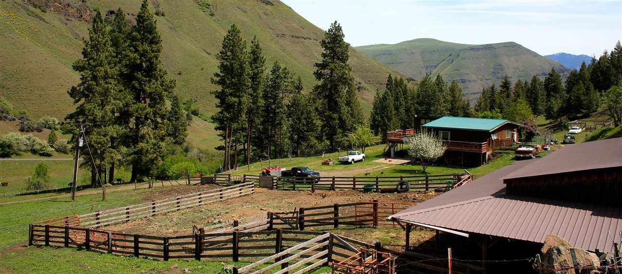 牧场 为 销售 在 667 Seven Devils Road 667 Seven Devils Road Riggins, 爱达荷州 83549