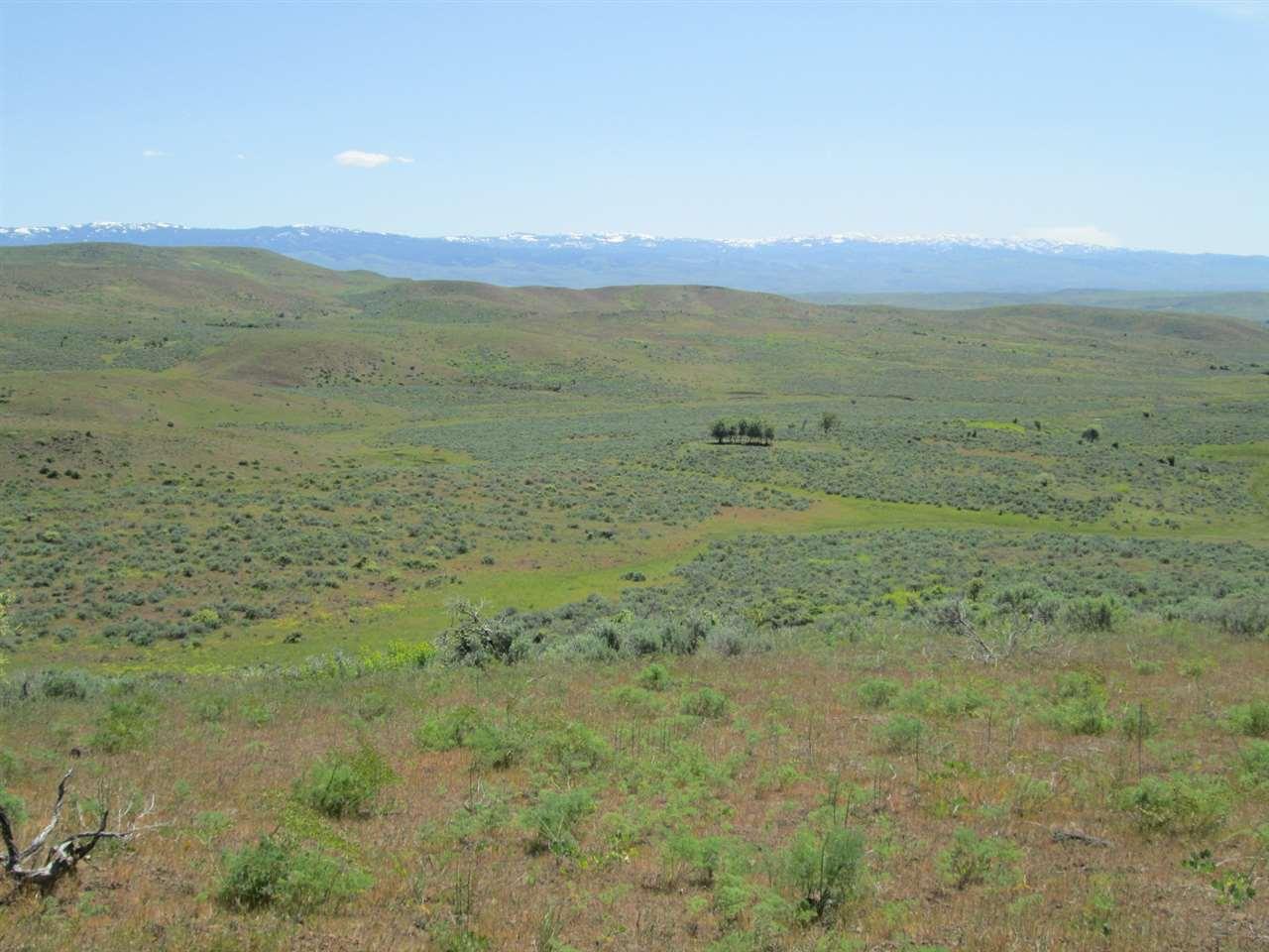 Land for Sale at TBD Goodrich Road TBD Goodrich Road Cambridge, Idaho 83610