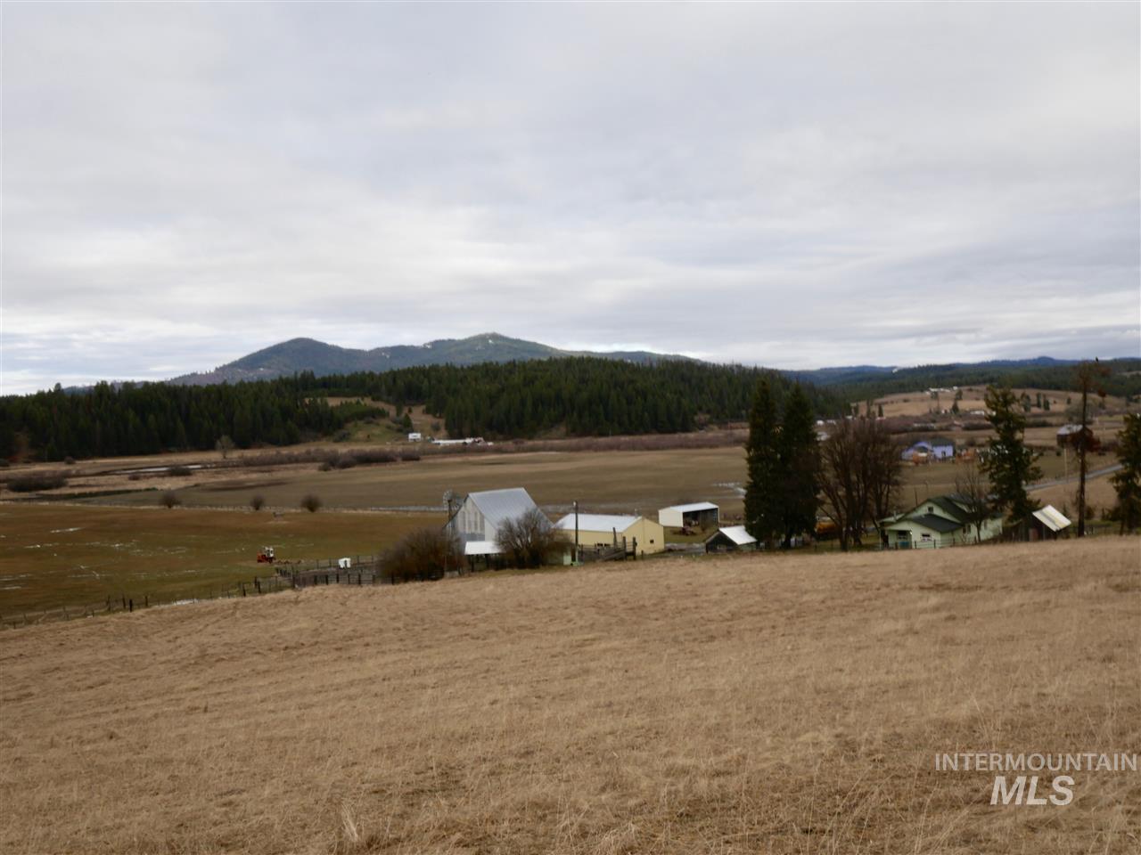 Hacienda por un Venta en 1101 Ruby Creek Road 1101 Ruby Creek Road Harvard, Idaho 83834