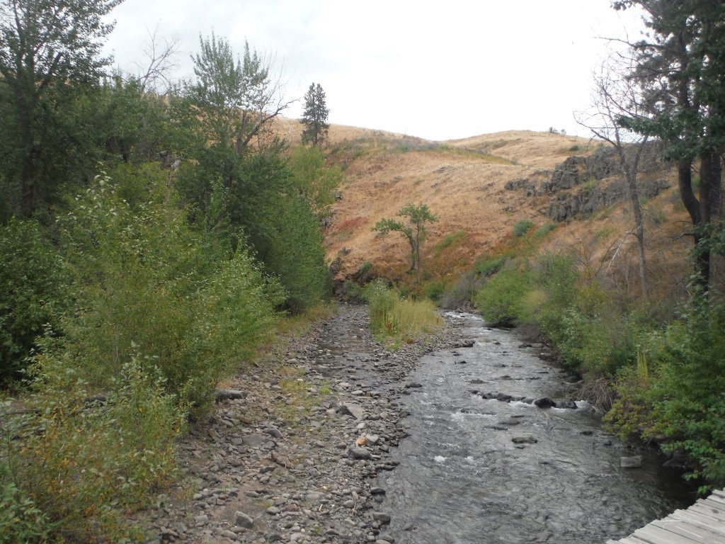 Lot 3 Middle Fork Rd,Council,Idaho 83612,Land,Lot 3 Middle Fork Rd,98682708