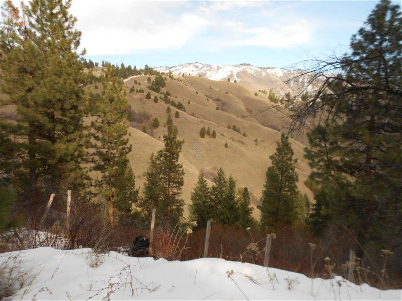 Casas de retiro por un Venta en TBD Phillips Creek TBD Phillips Creek Banks, Idaho 83622