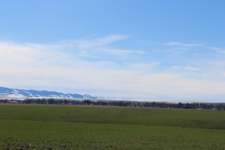 Granja por un Venta en 5478 Lariat Lane 5478 Lariat Lane Lewiston, Idaho 83501
