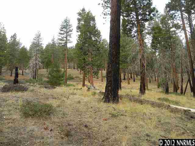 Additional photo for property listing at Kings Canyon Rd SEC 15 1519  Carson City, Nevada 89703 Estados Unidos