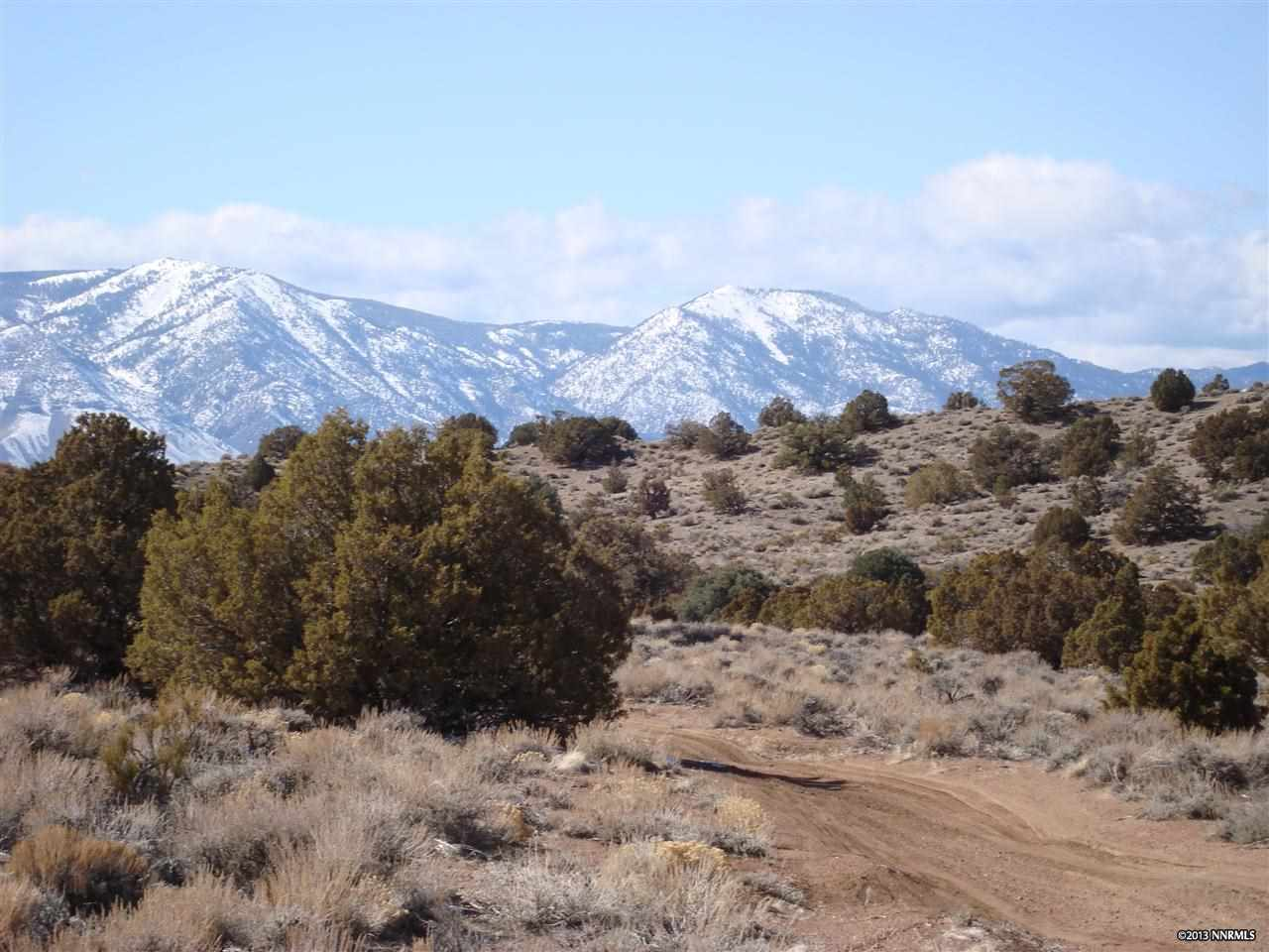 Additional photo for property listing at ELDON ROAD  Gardnerville, Nevada 89423 Estados Unidos