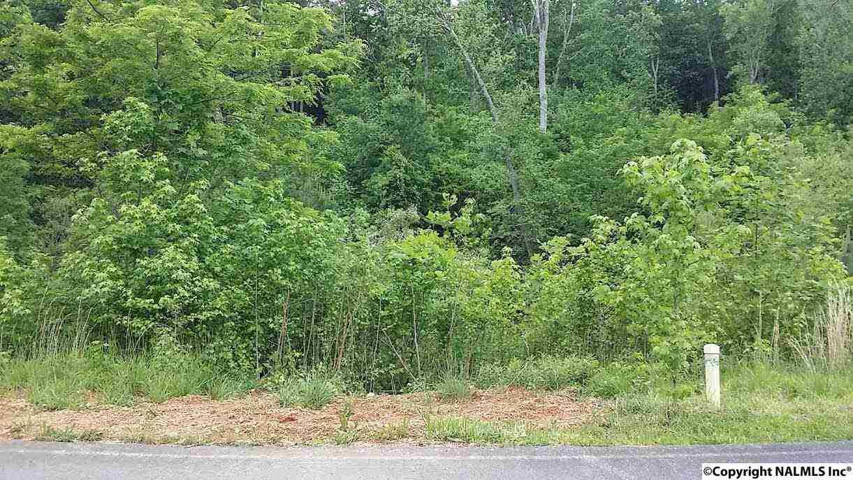 164 Lookout Mountain Drive, Scottsboro, AL 35769