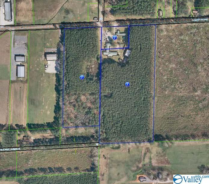 318 Hamer Road, Owens Cross Roads, AL 35763
