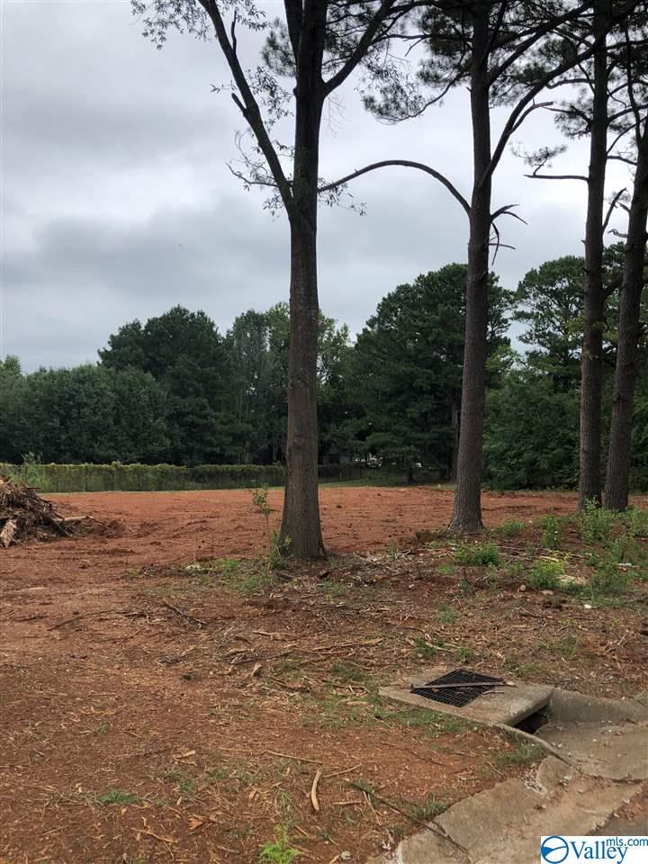 Summerview Drive, Madison, AL 35758