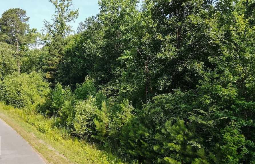 0 Nevins Road, Pine Bluff, AR 71603