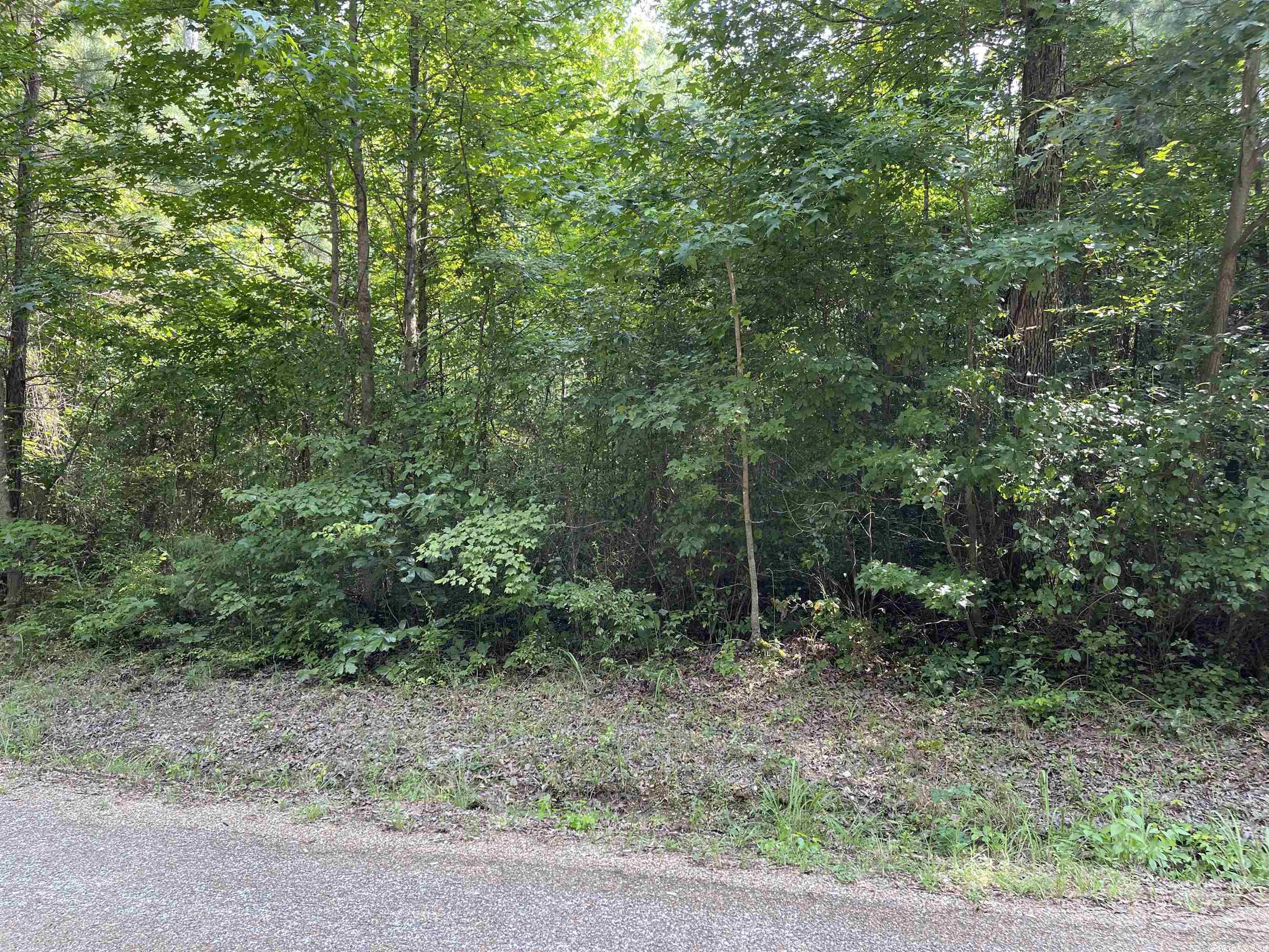 Lot 56 Clearwater Estates Subdivision, Sheridan, AR 72150