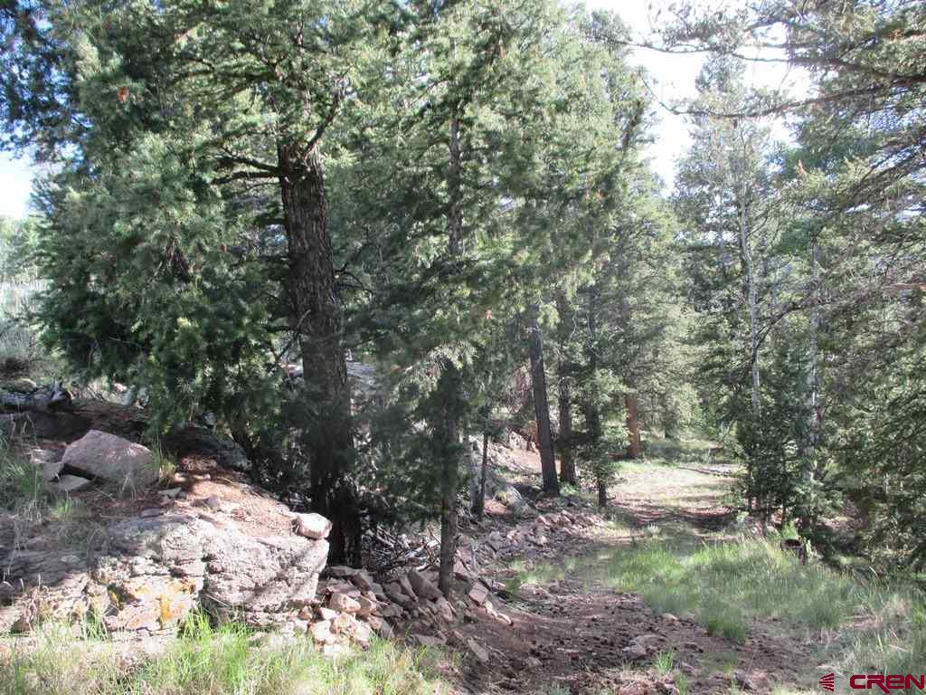1105 Slumgullion Trail, Powderhorn, CO 81243
