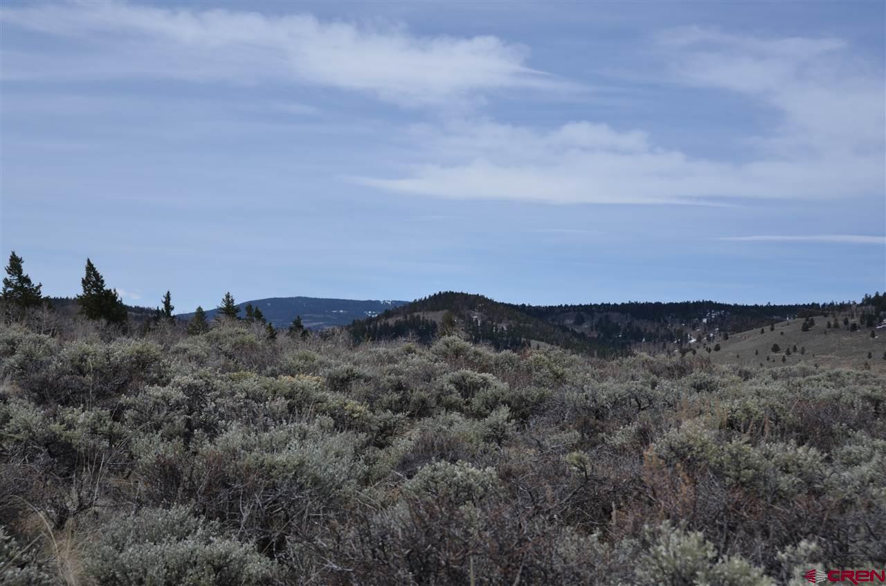 Lot 167 Unit 2 Cinnamon Trail, Powderhorn, CO 81243