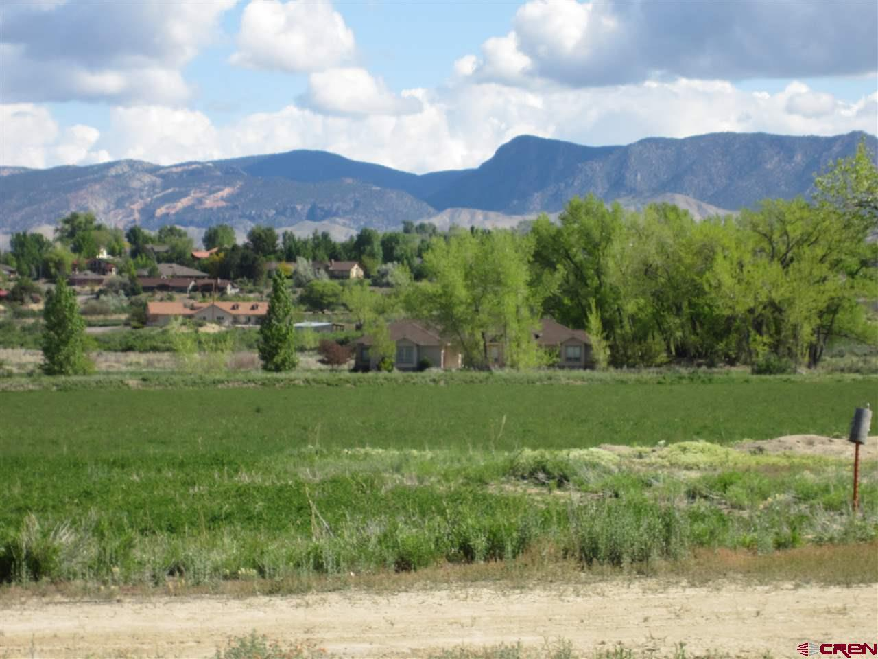 """CALLING ALL DEVELOPERS!  This is prime development property that is in an """"ideal"""" location.  This 40 acres is surrounded by the prestigious Brown Ranch Development in Montrose, Colorado.  Beautiful homes line this property on 3 sides. Perfect opportunity to invest and create synergy with a wonderful subdivision in this prime spot. Water and sewer are in the road to the west. There would be a great opportunity to annex this piece of property into the city.  Think of they type of lovely homes that would be popular in the area such as patio homes as well as higher end homes. There is plenty of irrigation water to distribute to the area and the surrounding views and layout of the land are just another plus. Homes are needed in the area so this is a great opportunity to get on the train to a successful subdivision. Come see this property you will see the value and love the proximity of such a rare piece of property."""