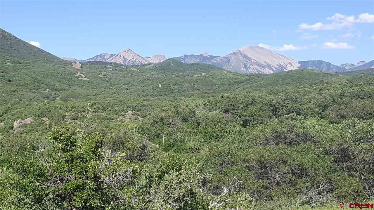 Beautiful  mountain property with amazing views in the West Elk Mountains with lots of wildlife. Comes with shared interest in two natural springs on the property.  Numerous roads and trails  to navigate property.  Truly beautiful property you must see to appreciate.  No deed restrictions, no covenants and plenty of wildlife.  Private and out of the way location with trees and wrap around views of the West Elk Range of the Colorado Rocky Mountains and the valley below.