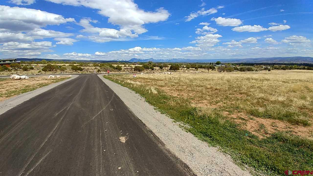MLS# 731844 - 1 -   Lot 2 Pine Ridge Road, Cedaredge, CO 81413