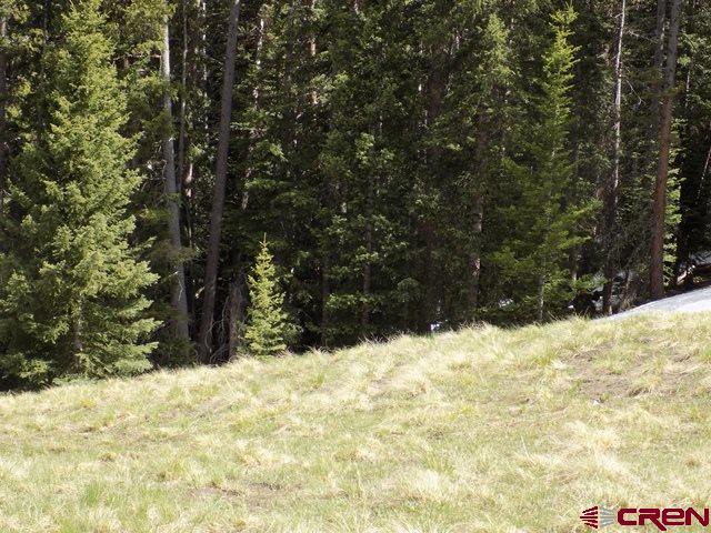 #TBD Silver Bluff Trail, Pitkin, CO 81241