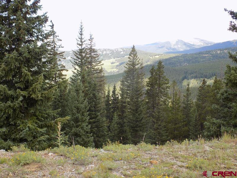 #TBD USFS 770 Road, Pitkin, CO 81241